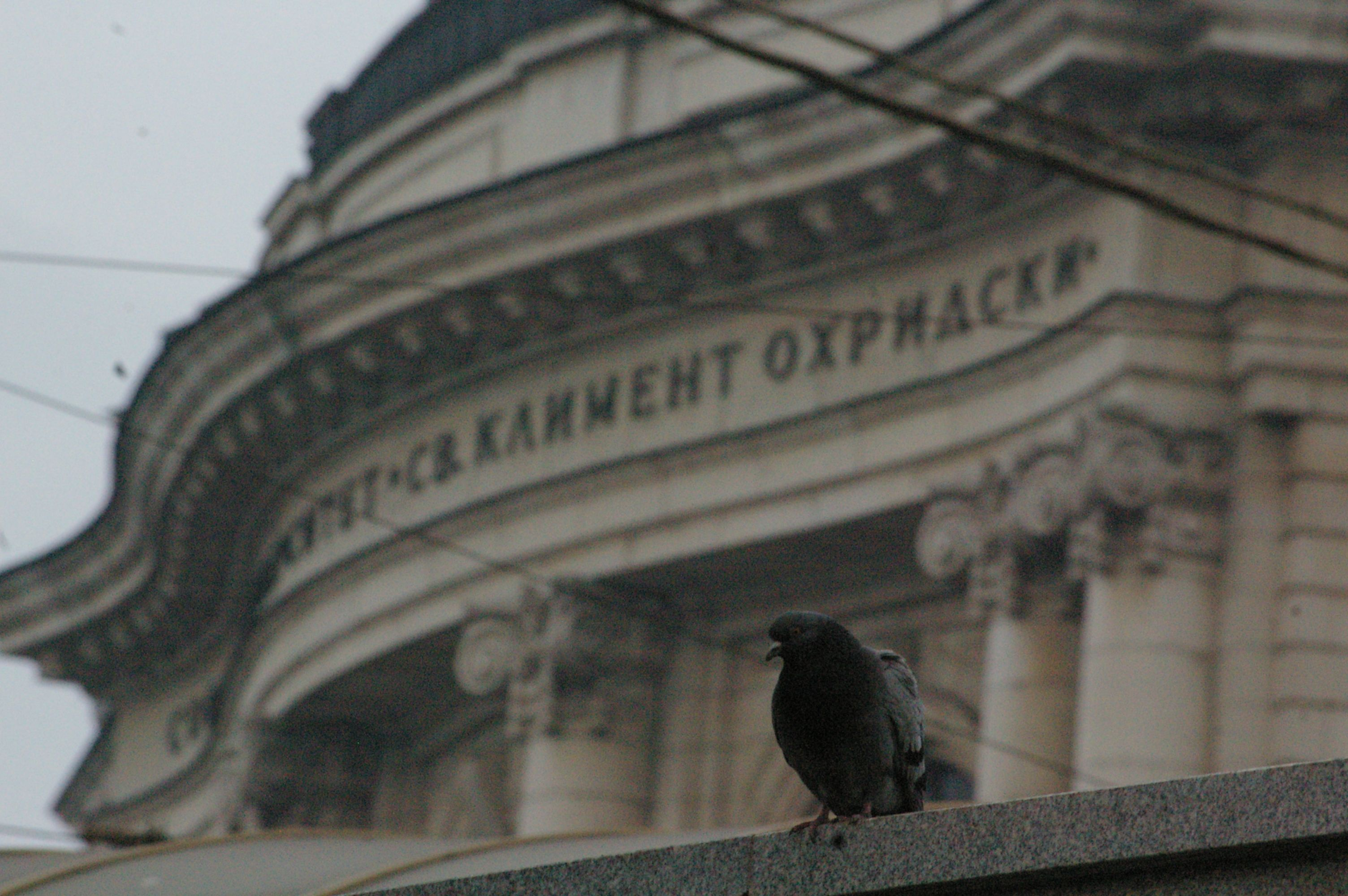 снимка - Юлиан Собаджиев